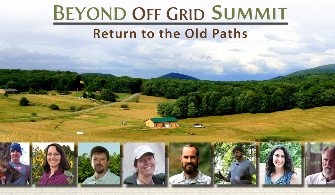 Beyond Off Grid Summit One Day Pass